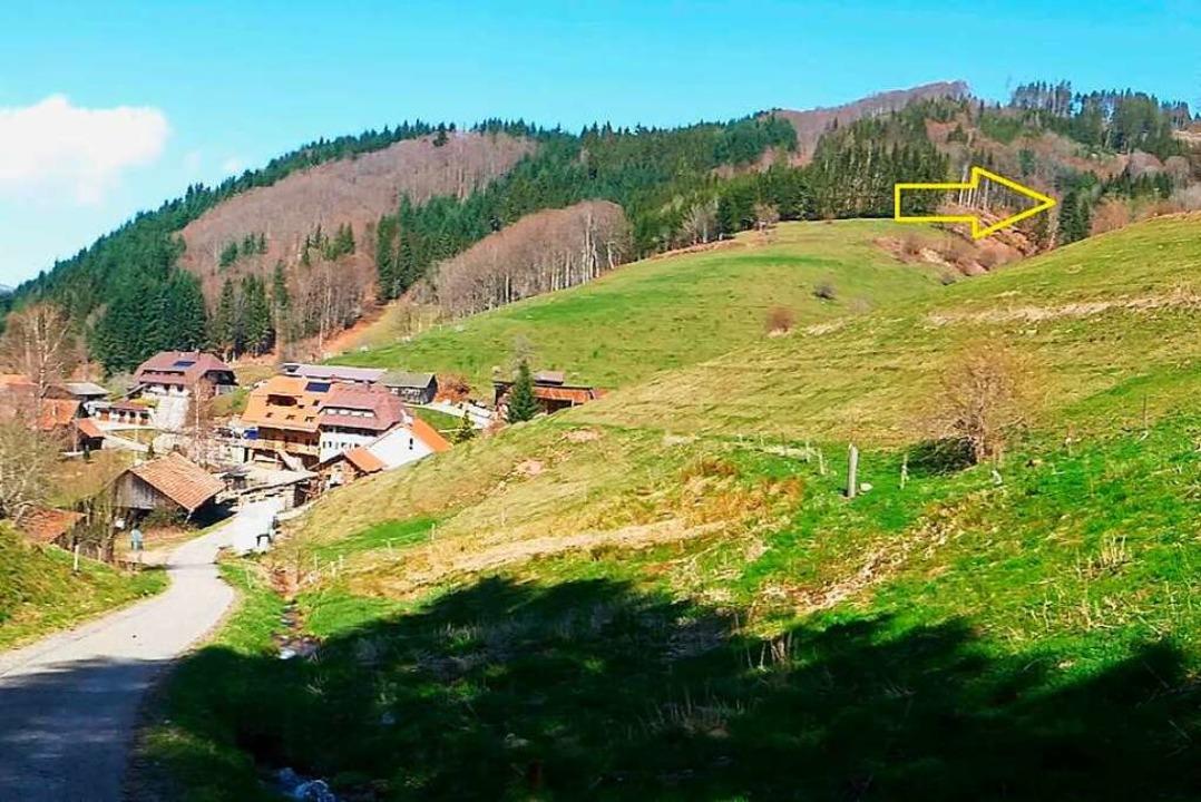 Oberhalb von Elbenschwand-Hinterdorf (...t großer Wahrscheinlichkeit Gebinbach.  | Foto: privat