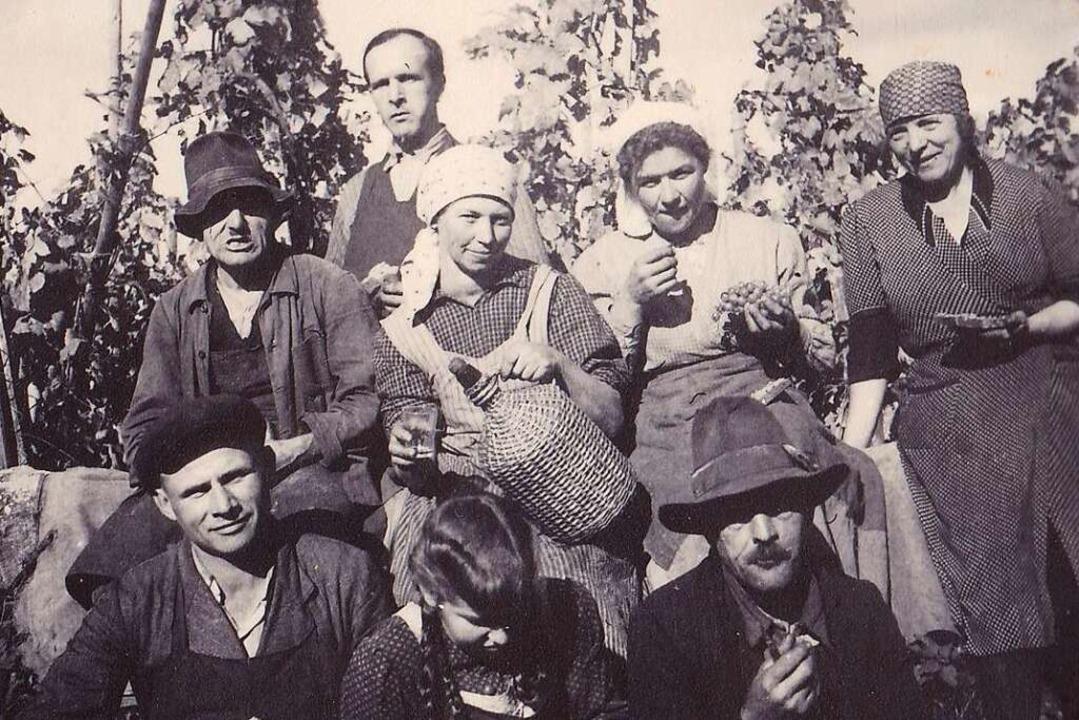 Weinlese in der Nachkriegszeit: vorne links der Pole Viktor Mazur.  | Foto: privat
