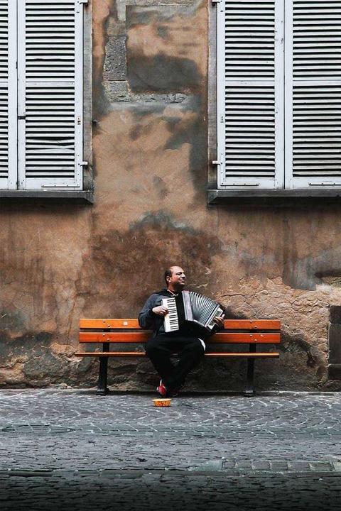 Auszeit allein im Hof?  | Foto: Max Borchardt