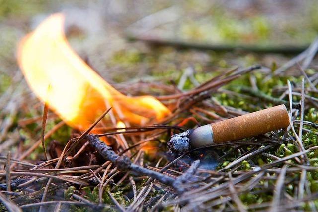 Feuerwehr kann Waldbrand in Freiburg-Günterstal mit Mühe löschen