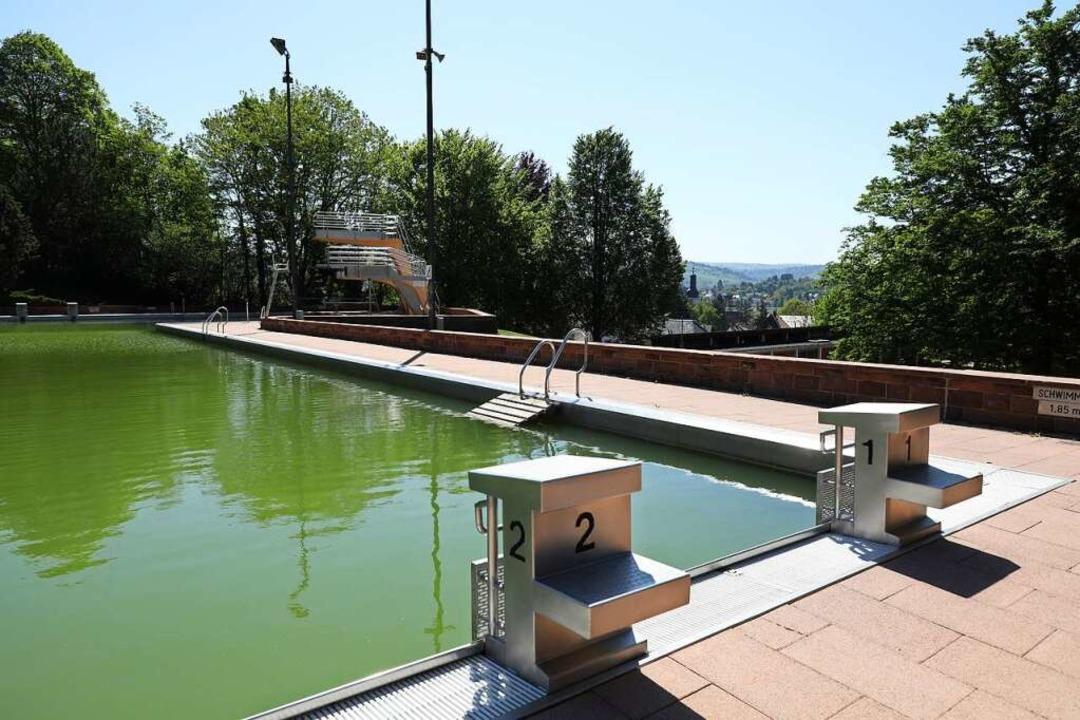 Das Wasser ist ganz grün: Im Terrassen...asser aus vergangenem Jahr das Becken.  | Foto: Christoph Breithaupt