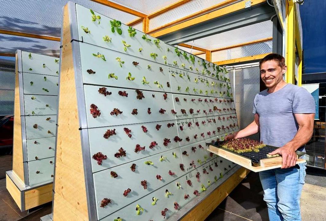 David Rösch mit seiner Steilhang-Salat...r vor allem als Bildungsprojekt sieht.  | Foto: Thomas Kunz