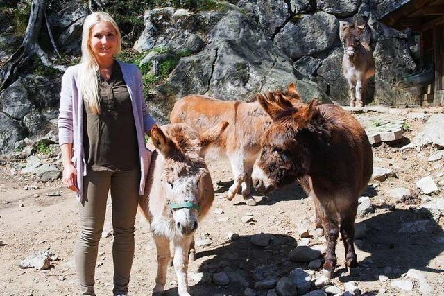 Steinwasenpark in Oberried hofft auf baldige Öffnung
