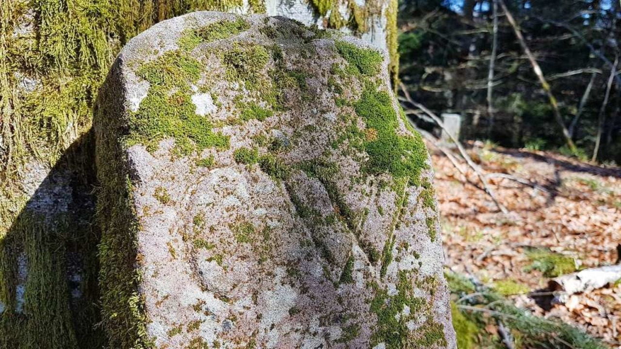 Wenn Steine reden könnten<ppp></ppp>    Foto: Gerald Nill