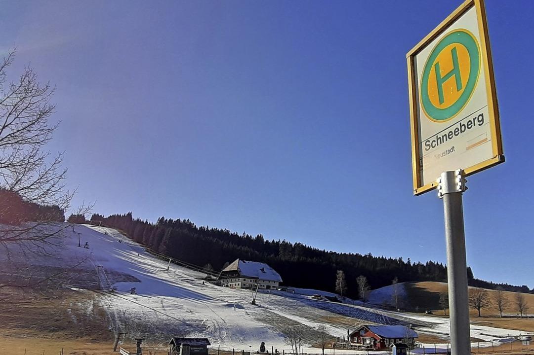 Mit Skiern befahrbare Schneeberge, wie...hwarzwaldwinter nur an wenigen Tagen.   | Foto: Johannes  Bachmann