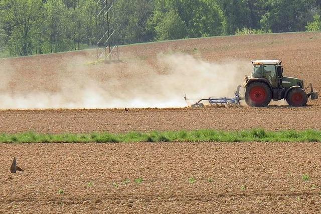 Landwirte machen sich Sorgen: Der Boden wird zu Beton