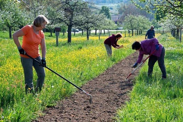 Ehrenamtliche in Hügelheim wollen alte Apfelsorten bewahren