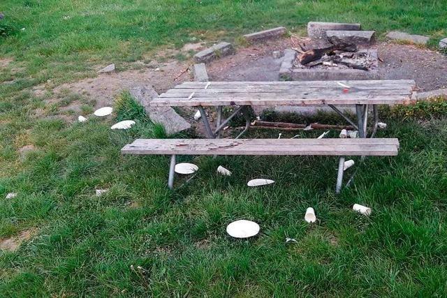 Die Stadt Lahr beklagt wilden Müll und Vandalismus