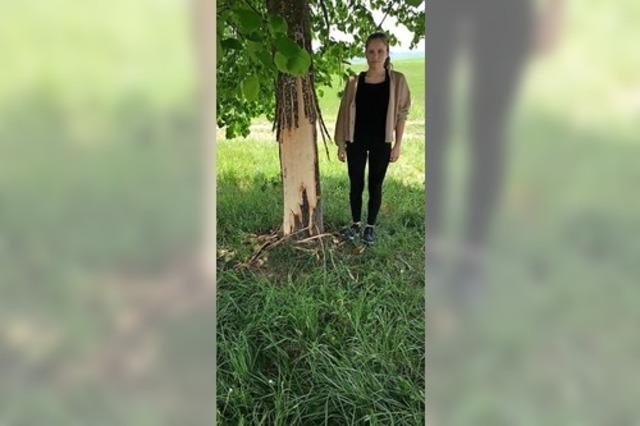 Zeugensuche nach Baumfrevel