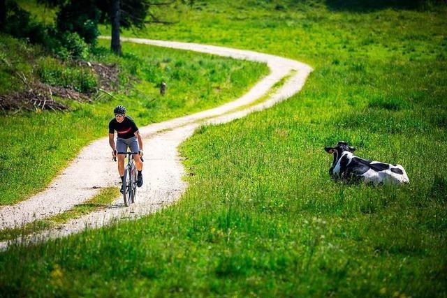 Freiheit auf zwei Rädern – mit einem Gravel Bike führen viele Wege zum Ziel