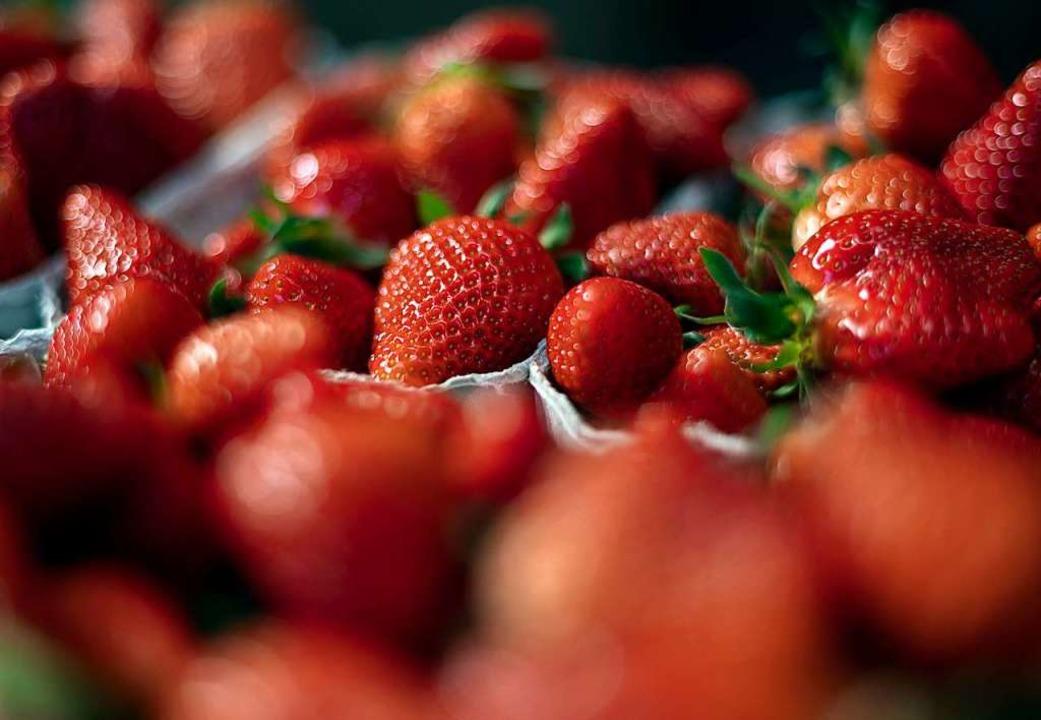 Bei den Erdbeeren könnte der Ernteausfall noch höher liegen.  | Foto: Patrick Seeger (dpa)