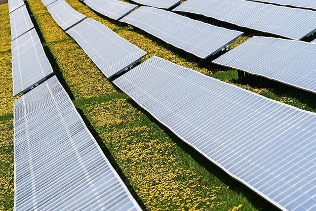 Solarpark nimmt Gestalt an