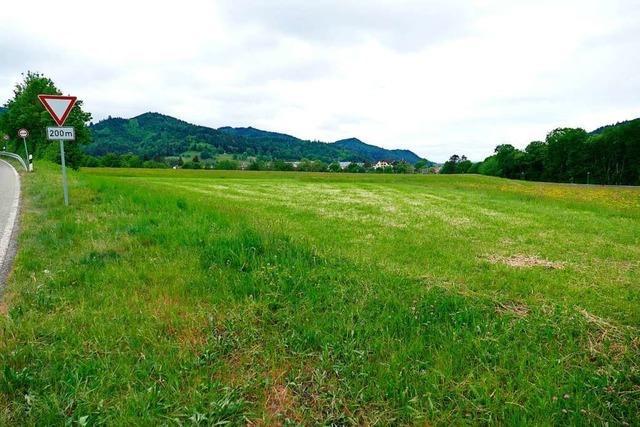 Waldkircher Rat stimmt für neues Gewerbegebiet