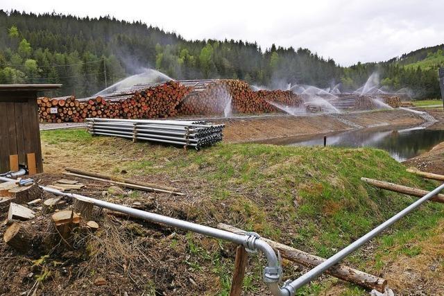 Wert des Rohstoffs Holz bewahren
