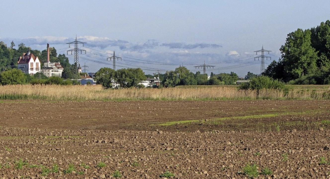 Auf Ackerflächen südöstlich des Ortes ...ein Grundstück in unmittelbarer Nähe.   | Foto: Martin Wendel