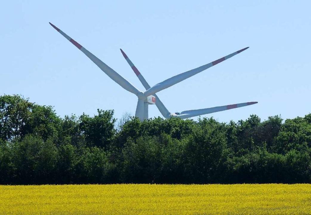 Ein Rapsfeld und Windräder im Hintergrund  | Foto: Roland Holschneider (dpa)