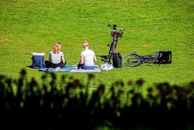Landwirte ärgern sich über picknickende Städter auf Futterweiden