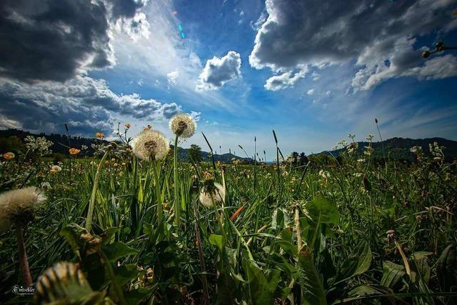 Wolkenpracht über Waldkirch