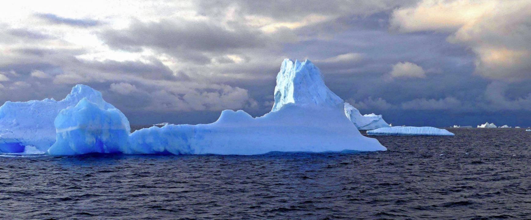 Eisberge treiben von der Antarktis in ... Anstieg des Meeresspiegels beitragen.  | Foto: Willi Germund