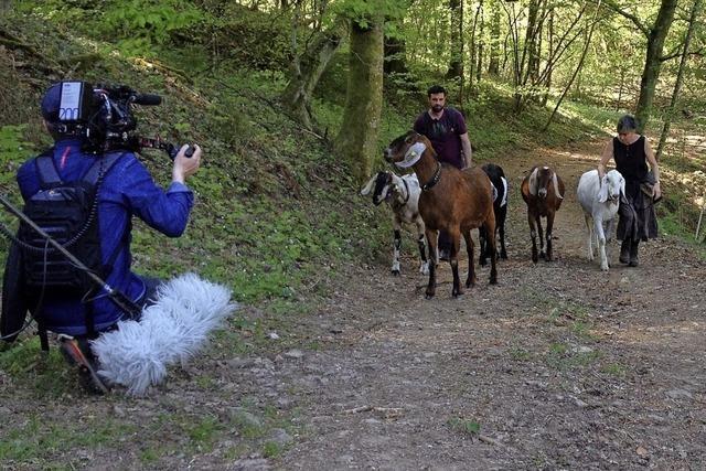 Mit Ziegen auf Wanderschaft