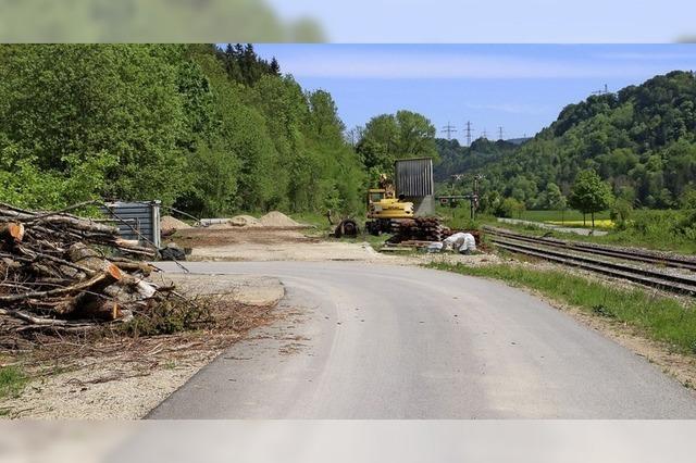 Holztransport per Bahn rückt näher