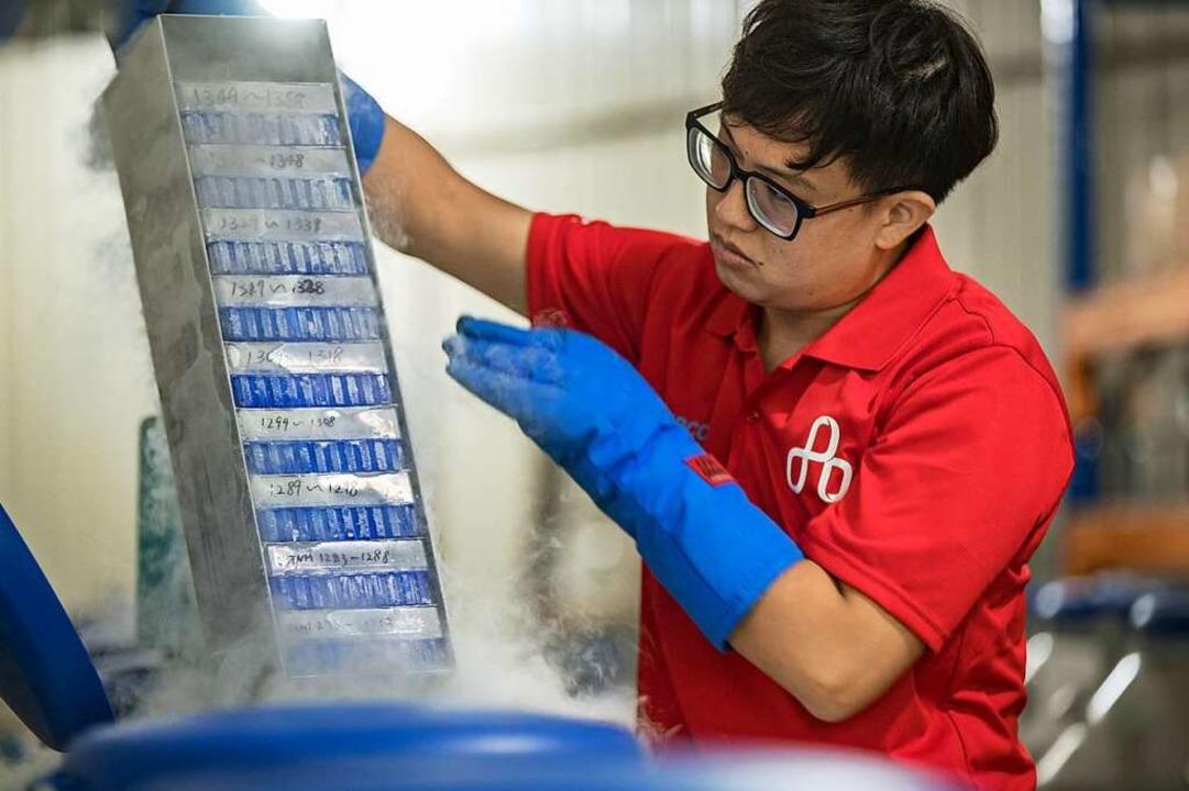 Tiefgefrorene Pflanzen-DNA: Auch Kryokonservierung wird im KBCC betrieben.  | Foto: KBCC