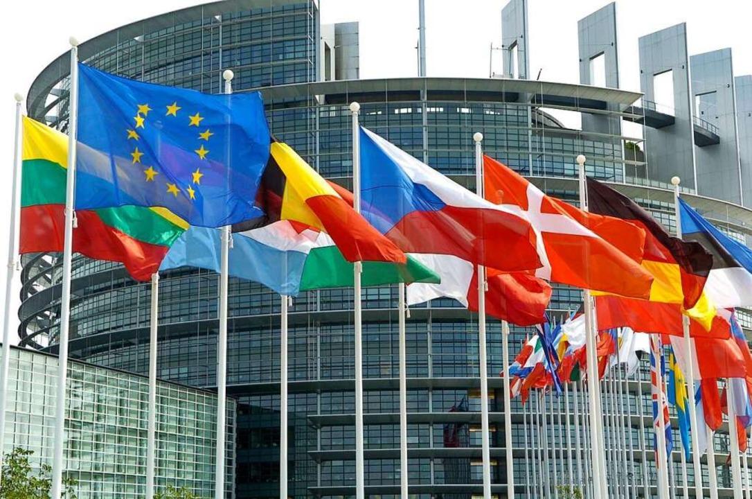 Frühestens im September werden die Abgeordneten wieder in Straßburg tagen.  | Foto: Rolf Haid