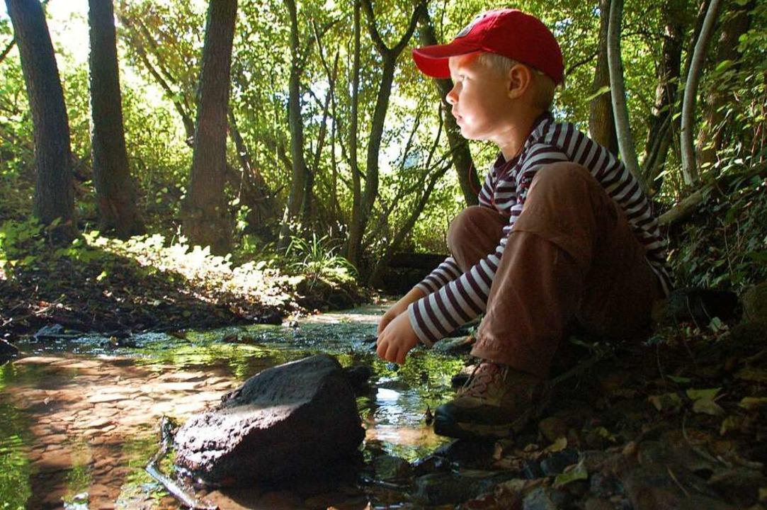 Kurze Stille  am Sulzer Wasserpfad   | Foto: Anselm Bußhoff