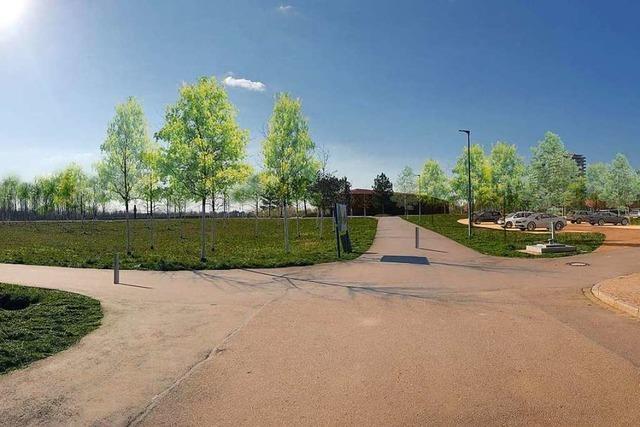 Lahrer Klimaschutz-Ortsgruppe ist gegen neue Parkplätze im Seepark