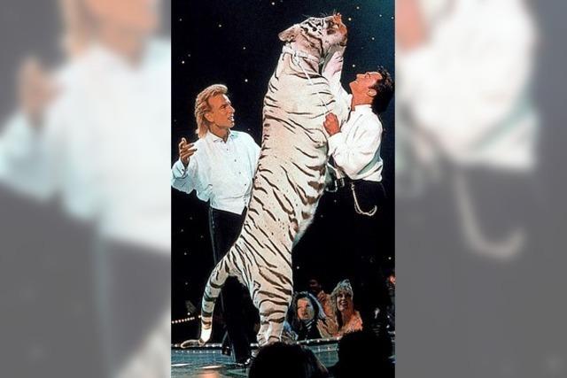 Der König der Tiger