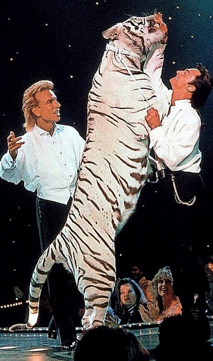Roy Horn (rechts) liebte seine weißen Tiger.     Foto: Fotoreport (dpa)