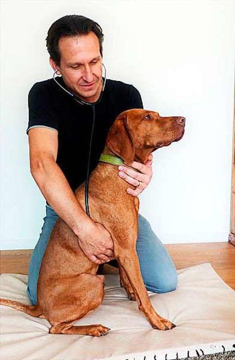 Tierarzt Stefan Müller bei der Arbeit.  | Foto: privat