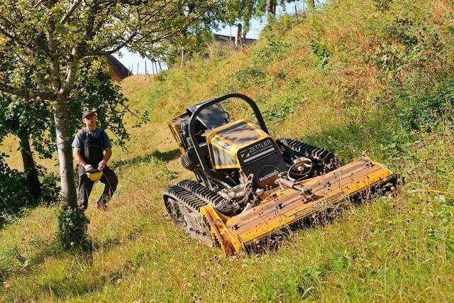 Land fördert mehrere Projekte im oberen Wiesental