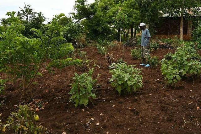 Weiler Selbsthilfe-Projekt in Kenia wegen Coronavirus stark eingeschränkt