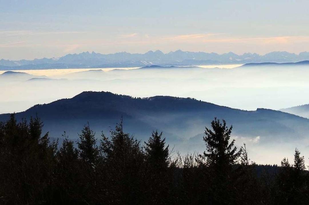 Blick übers Wiesental auf Eiger, Mönch, Jungfrau  und Mont Blanc    Foto: Edith Mandel