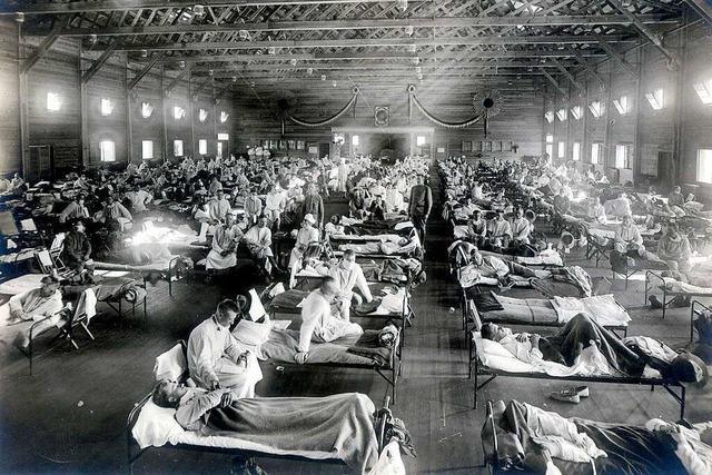 Die Spanische Grippe wütete ab 1918 auch im Dreisamtal und in Freiburg