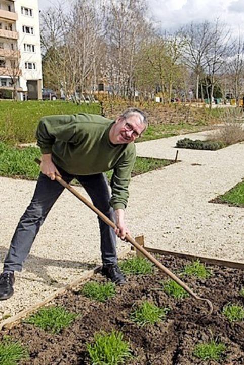Thorsten Mietzner beim Bestellen des W...uchsfeldes im archäobotanischen Garten    Foto: Luizian Taeger/Stadt Lahr