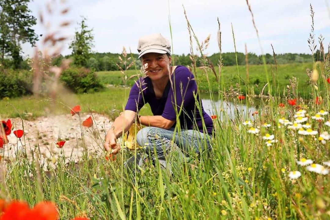 Annette Schnak beim Kräutersammeln, wo...terentlastungskanal den Mühlbach quert  | Foto: Christoph Breithaupt