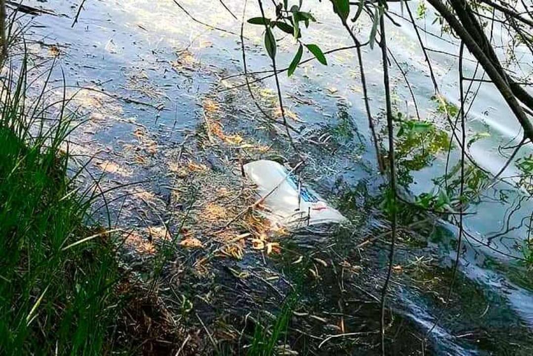 Müll liegt im Wasser- der Angelverein ...ll und Vandalismus auf seinem Gelände.  | Foto: Bastian Bernhardt
