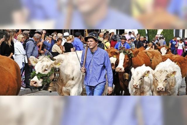 Auch im Dreisamtal häufen sich die Absagen von traditionellen Festen