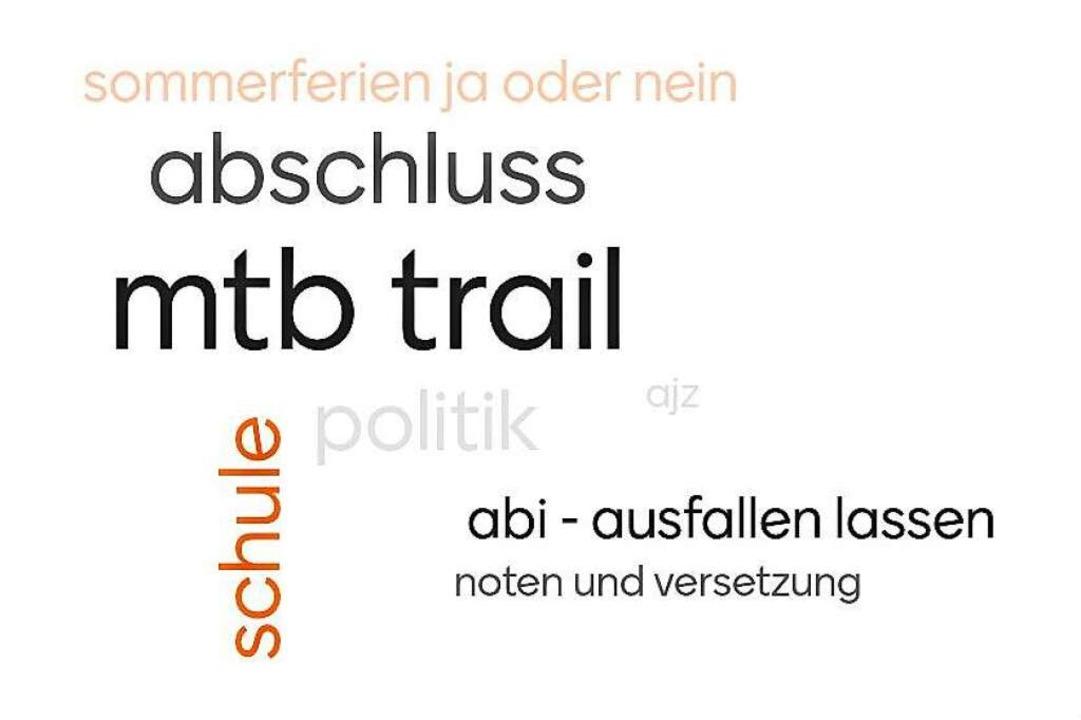 Wortwolke mit Begriffen, die die Jugendlichen derzeit beschäftigen  | Foto: Stadt Waldkirch