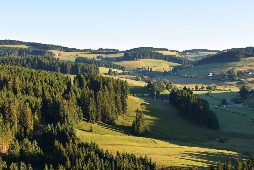 Zwischen Auggen und Vogtsburg, Breisac... positiv auf das Coronavirus getestet.  | Foto: Sebastian Wolfrum