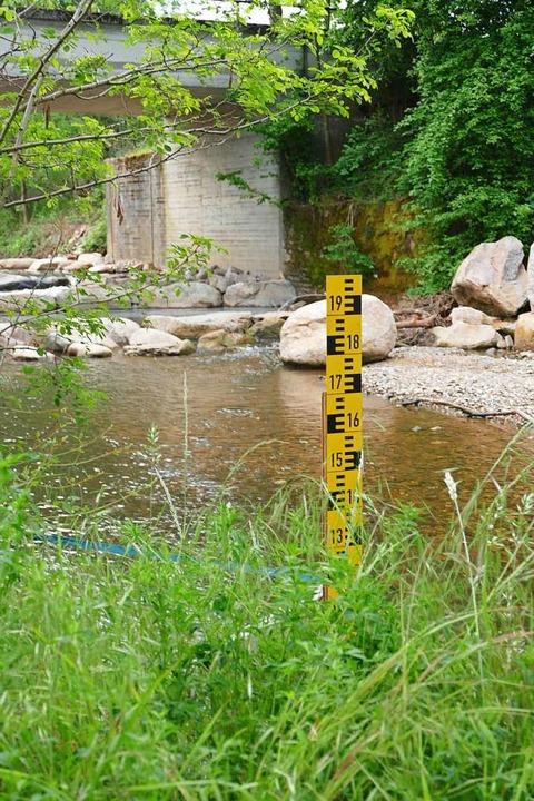 Der Maßstab zeigt, wie wenig Wasser die Kander (trotz Regen) noch hat.  | Foto: Victoria Langelott