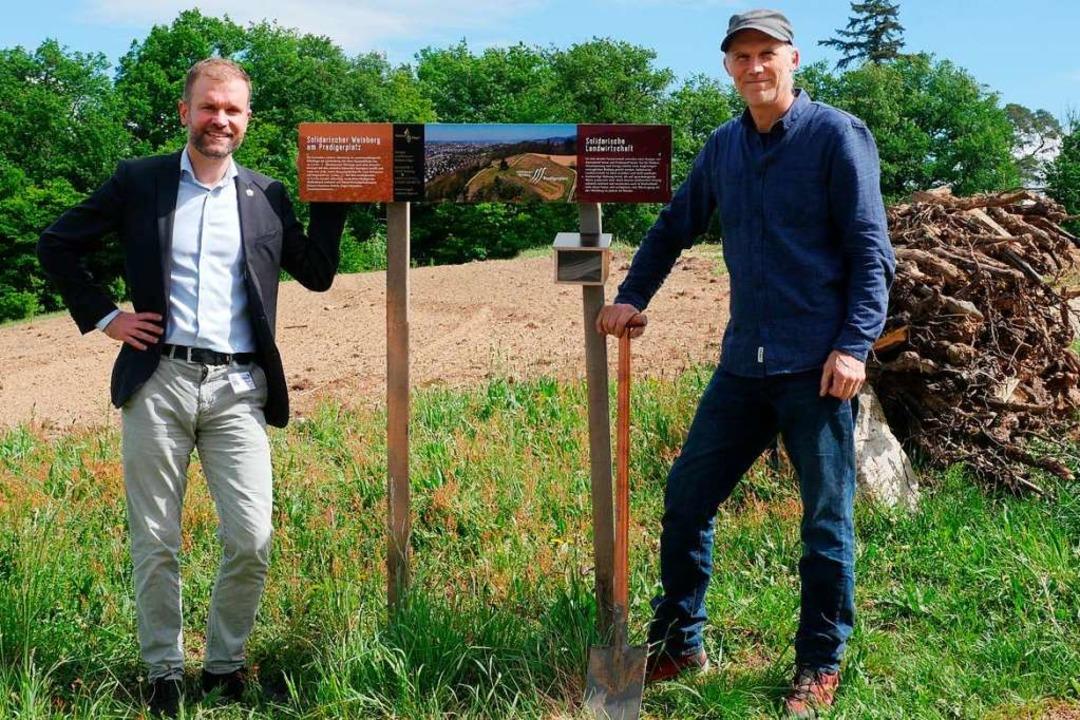 Merzhausens Bürgermeister Christian An...iderstandsfähige Rebsorten gepflanzt.   | Foto: Jannik Jürgens