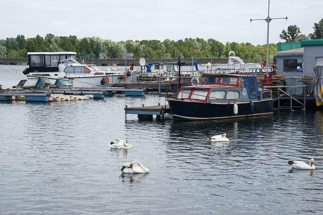 Der Hafen in Weisweil ist seit dieser Woche wieder offen