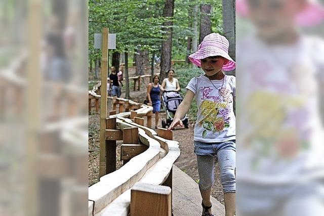 Waldkugelbahn kommt dieses Jahr ins Rollen
