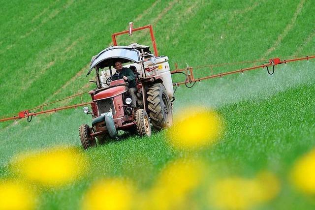 Wie Schweizer Landwirte während Corona Felder in Baden bewirtschaften
