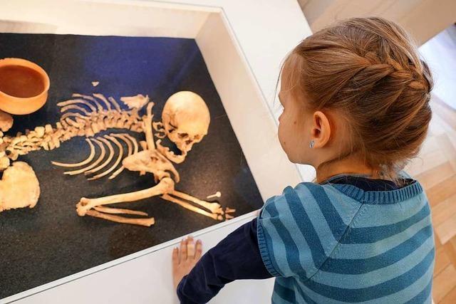 Freiburgs Museen laden am Sonntag zum Internationalen Museumstag