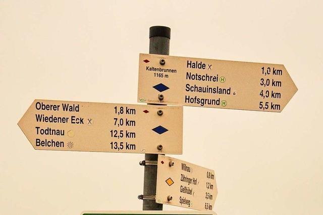 Wie Ehrenamtliche das Netz von Wanderwegen im Schwarzwald pflegen
