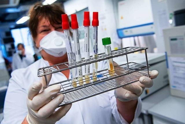 2000 Menschen aus Kupferzell sollen auf das Coronavirus getestet und befragt werden